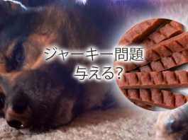 犬のおやつジャーキー健康問題