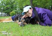 愛犬の闘病生活から今まで