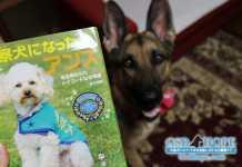 茨城県No.1犬を輩出する警察犬指導士
