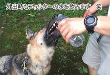 愛犬にも浄水器の水